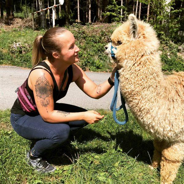 Trekkingtouren mit Alpakas www.holzmichlsalpakas.at #alpaka #holzmichlsalpakas #alpakatrekking #alpakadecke #thüringerberg #alpakawolle #feinstewolle #vorarlberg Holzmichl's ...
