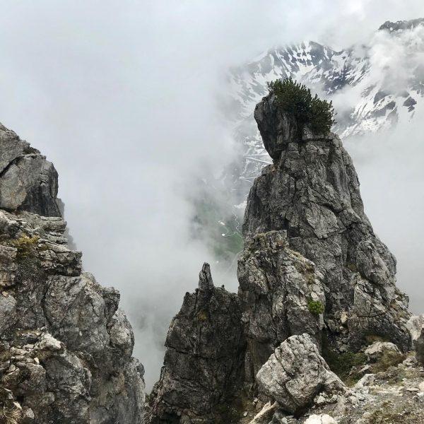 #trailrunning #instarunners #mountainrunning #tschaggunsermittagsspitze #montafon #vorarlberg Tschaggunser Mittagspitze