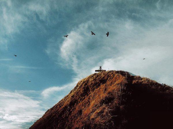 Wenn die Prophetin zum Berg geht... 🥾 #heutehiermorgenbier #mountainslovers #bergsteigen #gipfelkreuz #vorarlberg #grosseswalsertal ...