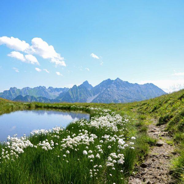 Die Bergwelt ist für uns ein magischer Ort. Hier oben ist die Natur ...