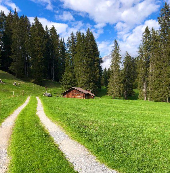 Versteckte, ruhige Lecher Lieblingsplätze... 🥾🥾🥾 die Wanderschuhe schon eingepackt?? am 24. Juni geht's ...