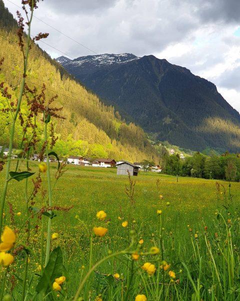 I no és bonica la primavera? . . . #Gaschurn #Vorarlberg #Austria #Österreich ...