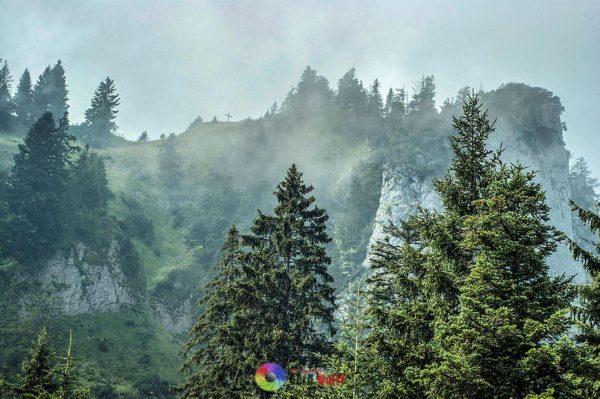Karren #karren #dornbirn #austria #vorarlberg #bodensee #mountains #österreich #view #berge #hiking #wanderlust #panorama ...