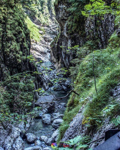 Rappenlochschlucht #rappenlochschlucht #dornbirn #nature #austria #natur #österreich #vorarlberg #schlucht #hiking #rappenloch #ausflug #wandern ...
