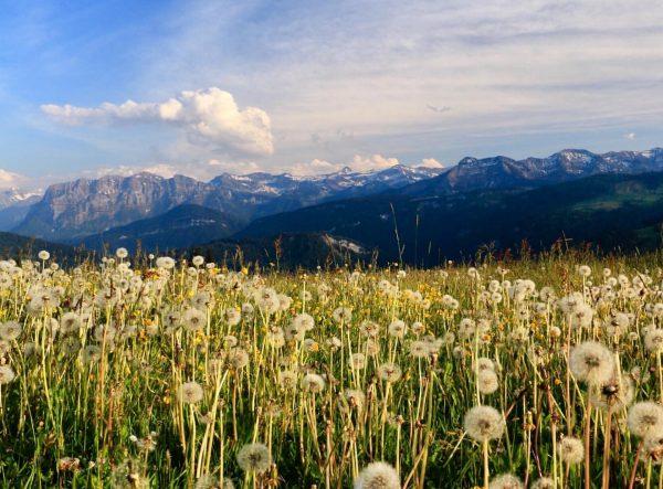 So könnte der morgige Feiertag in Schwarzenberg aussehen: Sich in der Natur bewegen ...