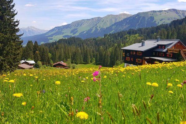 Wäldele 13.00 Uhr #Kleinwalsertal #Oostenrijk #Vorarlberg #Austria #Alps #bergen #traveling #Österreich Wandelen #Feriënwohnungen ...