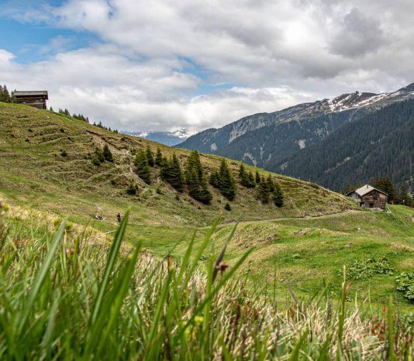 Ronggalpe . . . . . . . #montafon #meinmontafon #venividivorarlberg #visitvorarlberg #springtime ...