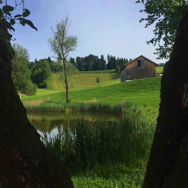 Schönster Arbeitsplatz der Welt - Bregenzerwald Motiv vom Dörnlesee #dörnlesee #may #lake #bregenzerwald ...