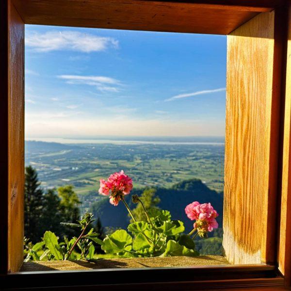 📍 Alpe Gsohl . . . . . @prilaga #vorarlberg #nature #vorarlberg❤️ #wonderfulplaces ...