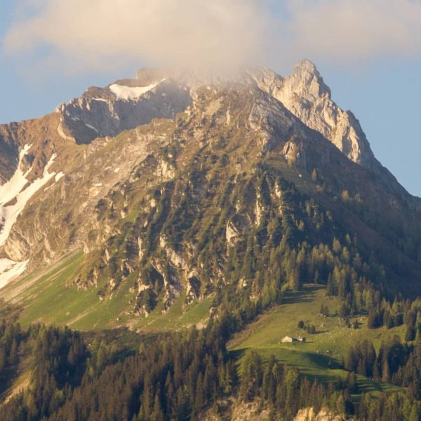 Distraction #homeofficeview #rätikon #bürserberg #mountainview #venividivorarlberg #naturegeography #sunrise Bürserberg