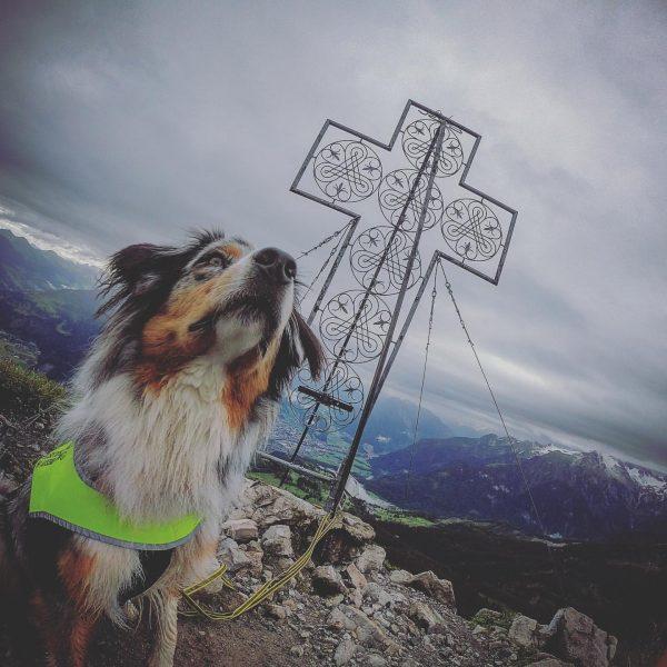 #goprophotography #gipfelstürmer #heimatliebe #dogsofinstagram #aussiesofinstagram #bluemerle #gipfelkreuz #venividivorarlberg #frühaufsteher #rätikon #visitvorarlberg #perspective #alpine ...