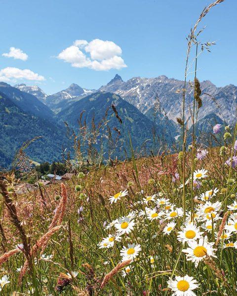 Heimatliebe ☀️🌄🌷🇦🇹. . Was ich am meisten an Vorarlberg liebe ist, dass wir ...