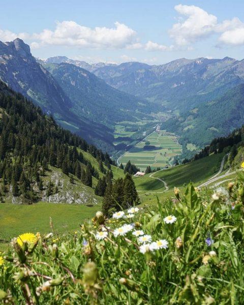 Views from way up to the Hirschberg 📸 by @despotov_sara_ #visitbregenzerwald #venividivorarlberg #bregenzerwald ...