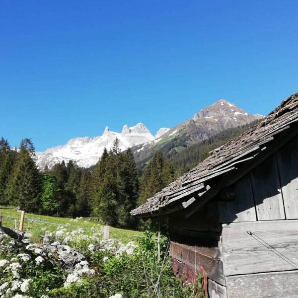 Vorarlberger Wanderführer Ausbildung im Gauertal ❤️ #dreitürme #geißspitze #lindauerhütte #beruf #wanderführer #ausrüstung #trittschulung ...