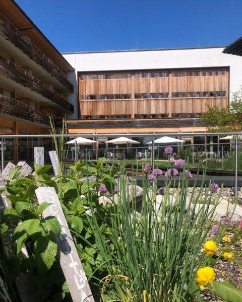 #openandopenforyou   Unser Kräutergarten blüht und gedeiht zu dieser Jahreszeit auch endlich wieder. ...
