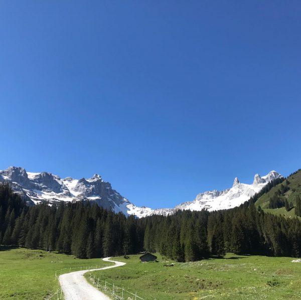 Wanderführer Ausbildung auf der Lindauer Hütte. Soviel Schnee hab ich den ganzen Winter ...