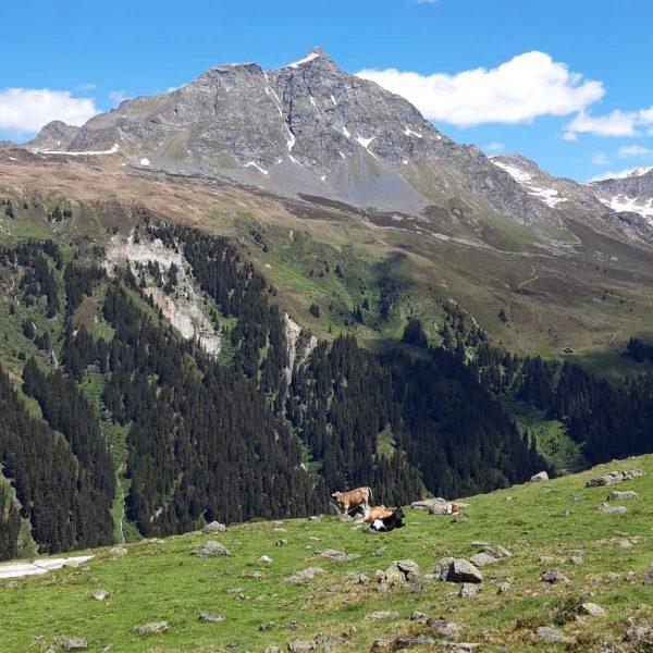 Gaschurner Wandertag mit schönem Ausblick von Gibau zum Valschavieler Maderer 🗻 . . ...