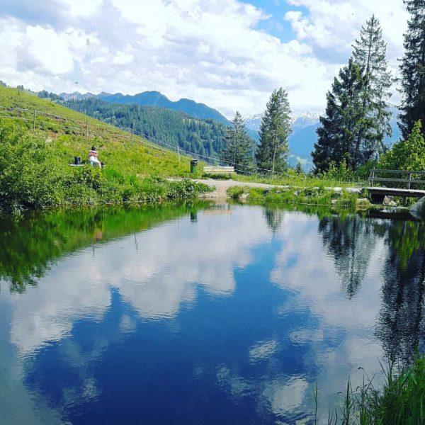 Einmal Muttersberg - Frassenhütte und zurück. Immer eine Wanderung wert und locker machbar ...