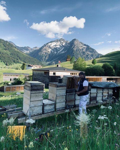 Honig von den eigenen Bienen. Sind solche Kleinigkeiten nicht der wahre Luxus im ...