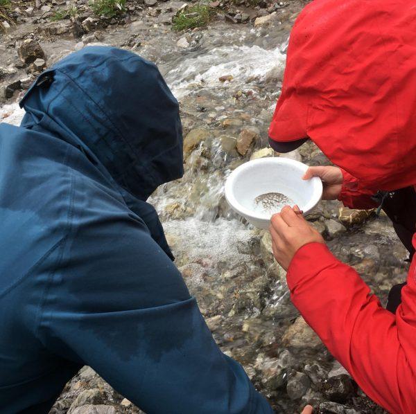 """Trotz Regenwetter, wieder eine motivierte Gruppen bei meiner Kurseinheit """"Naturkunde & Naturvermittlung"""" zur ..."""