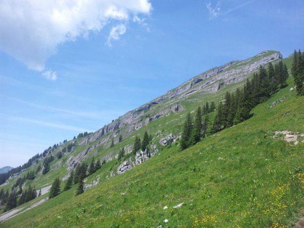 Die Vorarlberger Landesregierung hat letzte Woche die Unterschutzstellung der Kanisfluh beschlossen. Der Alpenverein Vorarlberg hat ein Landschaftsschutzgebiet...