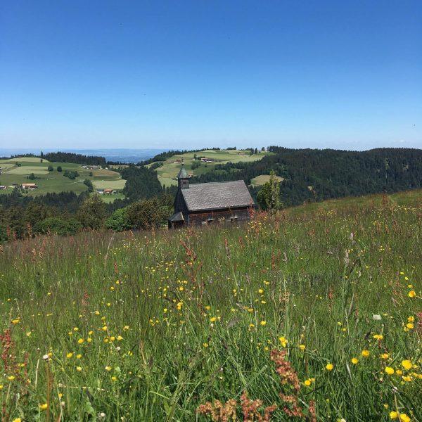 #hirschberg #bregenzerwald #visitvorarlberg #hiking #minweag #etappe2 #pfänder to #sulzberg Hirschberg (Langen bei Bregenz)