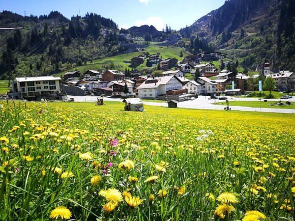Ich kam. Ich sah. DEN SOMMER. 🌼⛰️💚 #stuben #arlberg #albona #venividivorarlberg #stubenrocks #meinstuben ...