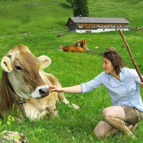 """#7 Sennalpe der KäseStrasse Bregenzerwald """"Alpe Glockenplatte"""". Auf der Alpe wird von Familie ..."""
