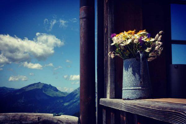 Breitenalpe #österreich🇦🇹 #vorarlbergwandern #vorarlberg #visitvorarlberg #bregenzerwald #diedamskopf #schoppernau #au_schoppernau #wandernmachtglücklich #wanderlust #wandern #alpen ...