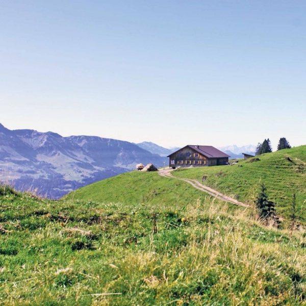 """#9 Sennalpe der KäseStrasse Bregenzerwald """"Alpe Hochleckach und Toserloch"""". Familie Winder aus Lingenau ..."""