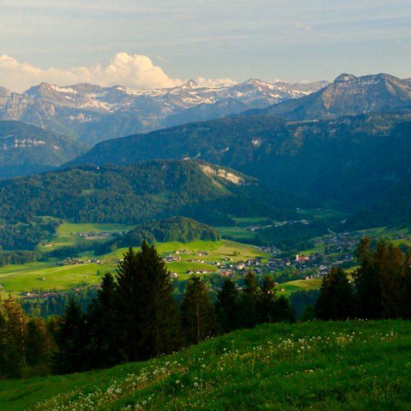 Ins Grüne blicken, die Weite spüren und sich augenblicklich entspannt fühlen... das tut einfach gut.☺️ . 📸...