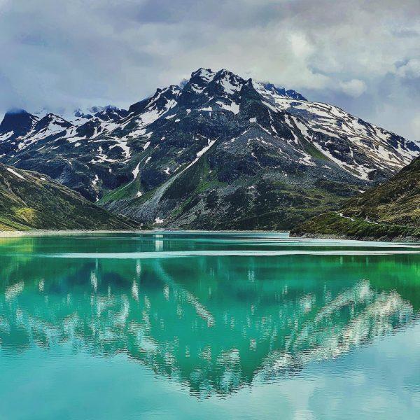 In the wild 3 🌱 #mountain #mountains #mountainlife #lake #lakelife #stausee #silvrettamontafon #montafon ...