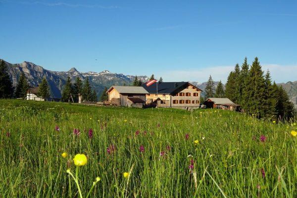 """#12 Sennalpe der KäseStrasse Bregenzerwald """"Alpe Kassa Wildmoos"""". Gäste sind von Sonnenaufgang bis ..."""