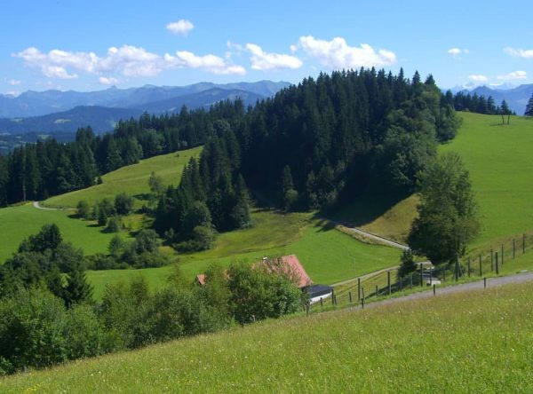 A view from Pfänder .. . . . #pfänder #austria #bregenz #pfänderbahn #aussichtpunkt #bodensee #lakeconstance #pfänderbregenz #bodensee_de...