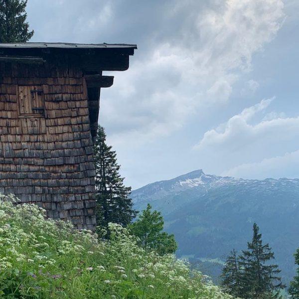 Wanderung auf die Riezler Alpe #gaestehaus_huber , #riezleralpe , #riezlern , #kleinwalsertal