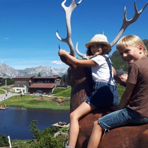 Das sagenhafte Bärenland 🐻🐻 am Sonnenkopf🌞🌞🌞⛰🚠 startet in die Sommersaison. Vom 27.06.2020 bis ...