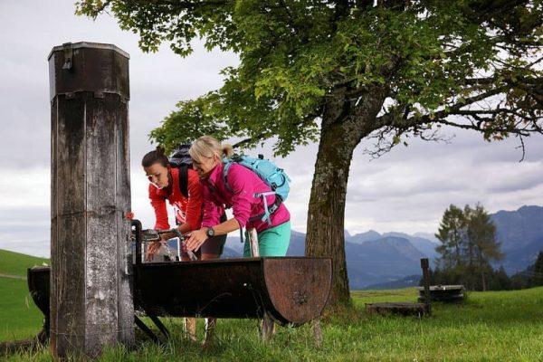 Wandern im Bregenzerwald 😍 Warum das Bödele im Bregenzerwald zu den TOP 10 ...