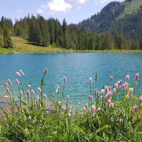 Der Herzsee verursacht Herzklopfen, wer spürts auch? ❤️ #herz #see #visitvorarlberg #wanderung #sommer2020 ...