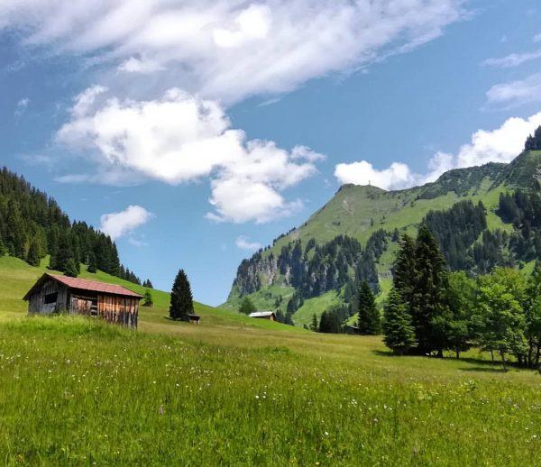 #au #bregenzerwald #vorarlberg #austria #mountains #diedamskopf #liegstein #mittagsfluh #nature #landscape #hiking #biking #bluesky ...
