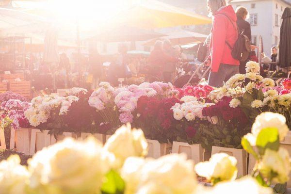 Am Mittwoch & Samstag gehört der Marktplatz ganz dem Wochenmarkt. Frische, regionale Lebensmittel ...