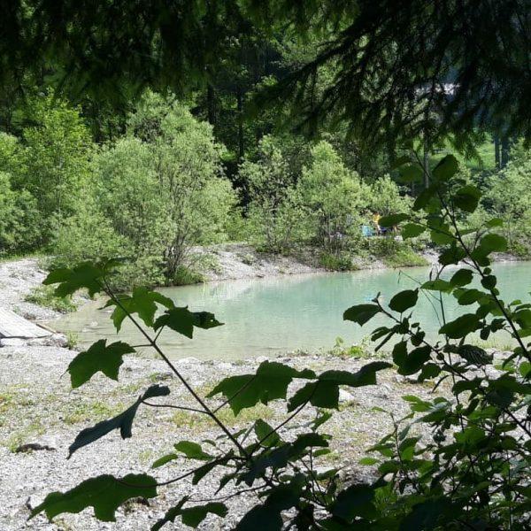 #grosseswalsertal #biosphärenpark #vorarlberg #visitvorarlberg #venividivorarlberg #österreich #austria #visitaustria #alps #alpinelove #alpen #alpenliebe #berge ...