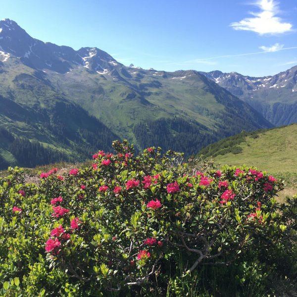 Vorarlberger Bergbahnen Tag - mit @vorarlberg.bewegt und dem Vorarlberger Familienpass konnten wir eine ...