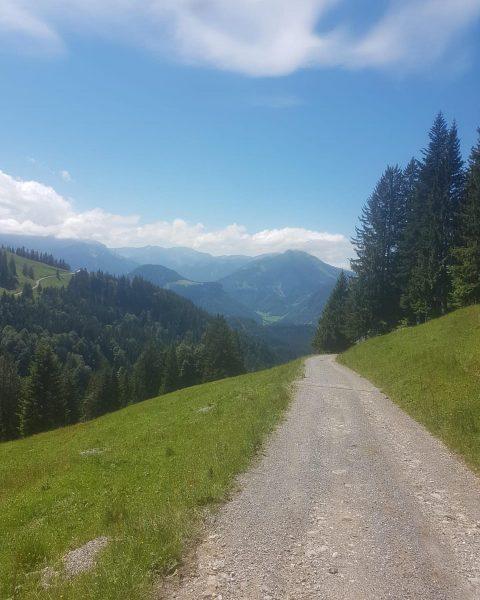 Herrliche Mountainbike-Tour @bregenzerwaldalpen 🚵♀️ Andelsbuch - Schetteregg - Schreibersattel - Schreiberalpe - Bezau ...