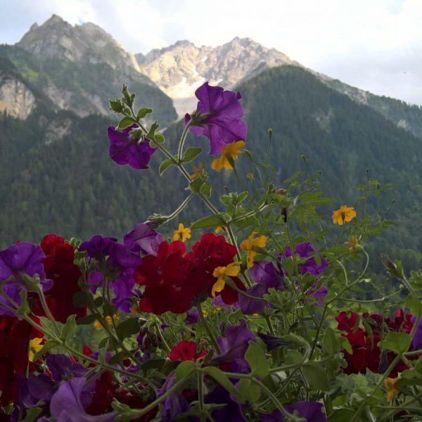 #soschönda #berge #brand #wanderausflug #wandergruppe # Alpenhotel Zimba