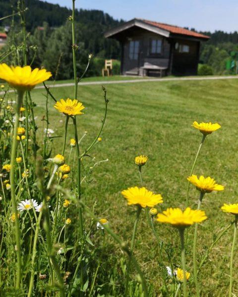 #GolfParkBregenzerwald #riefensberg #oberstaufen #allgäu #golfmachtspaß #golfplatz #golfcourse #bregenzerwald #golf #summer #outdoor Riefensberg, Vorarlberg, Austria