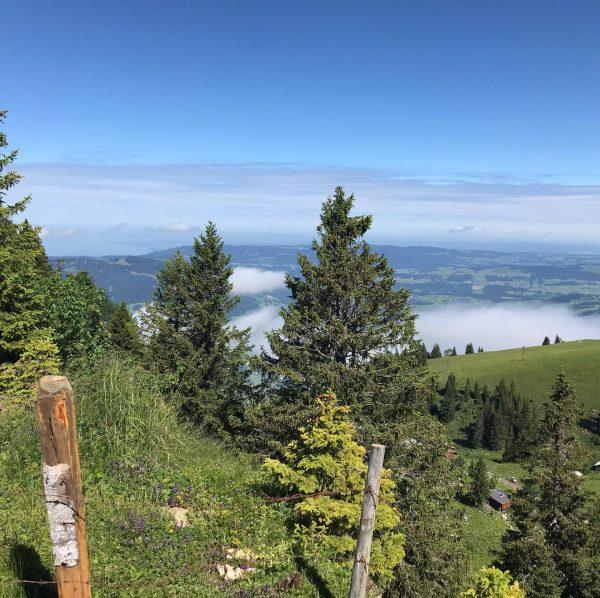Eine 5-stündige Wanderung zum Gipfel Winterstaude (1.877m) . . #venividivorarlberg #vorarlberg #ländle #wandern ...