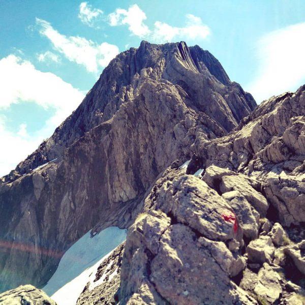 Mein lieber Biber bist du schön. 💕🥰 #biberkopf #traumtag #wanderlust #berggehen #hiking #bregenzerwald ...