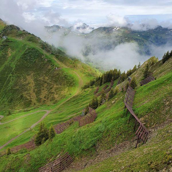 Walmendingerhorn, Abstieg nach Baad. Ganz gemütlich #allgäu #kleinwalsertal #urlaub #wandern #oberstdorf #freizeit Oberstdorf, ...