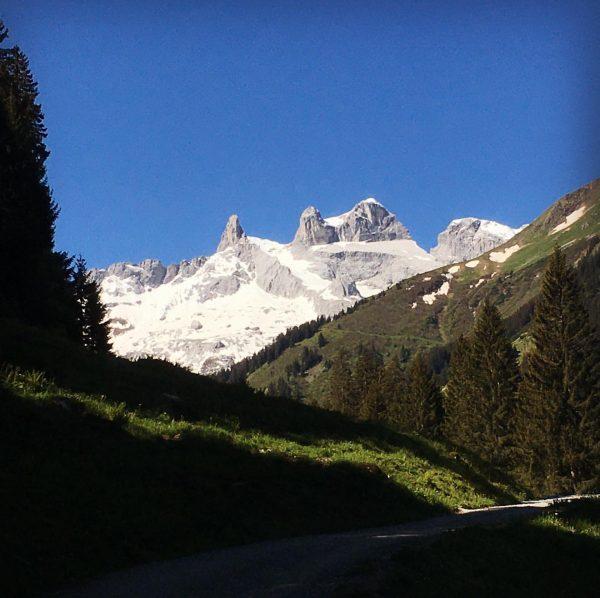Beim Wanderführerkurs auf der Lindauer Hütte durfte ich an einem Traumtag die Themen ...