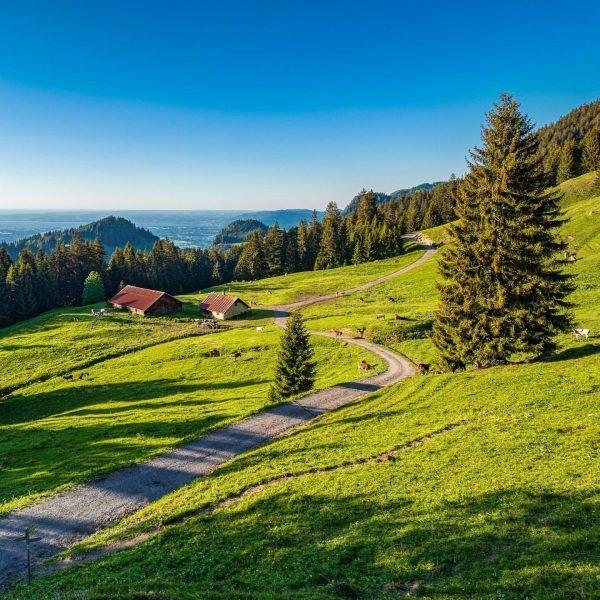 #ontheway to the #hohekugel #alpe #alpen #alpenliebe #vorarlberg #austria #visitvorarlberg #visitaustria #ig_austria #loves_austria ...